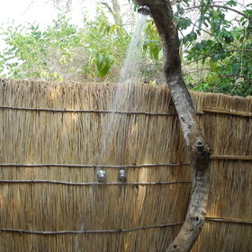 ... a powerful shower built into a tree...