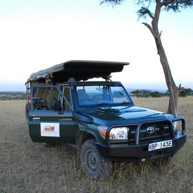 Encounter Mara uses well adapted Land Cruisers for their game drives…