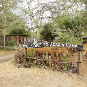 Acacia Camp feels surprisingly remote and in the bush, despite being close to the Mombasa Highway.