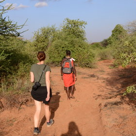 Activities include botanical walks with local Maasai guides ...