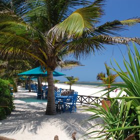 Along the seaward edge of Diani Blue is a sandy terrace known as The Edge.