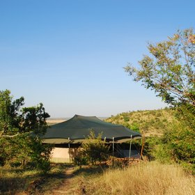 …and the guest tents, mounted on platforms on the hillside, have untrammelled views.