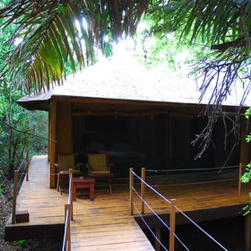 The five tented rooms are set on a wooden platform and are accessed by forest paths.