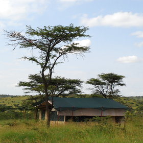 The six tented rooms are all spread wide apart through the bush...