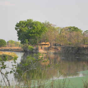 ... where you will find a hippo hide...