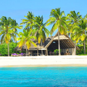 Fanjove Private Island Lodge is located on the remote Fanjove Island 20 miles off Tanzania.