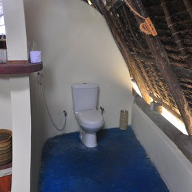 … and a flushing toilet.