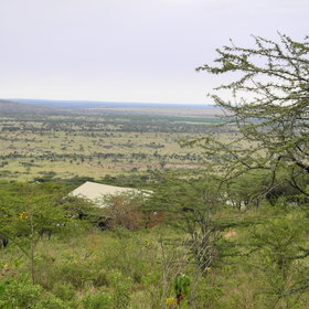 Leopard's Ridge is just outside the park boundaries, in an area called Loliondo.