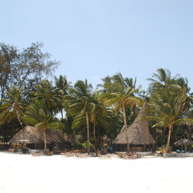 Pinewood Beach Resort is located on Galu Beach, south of Diani.