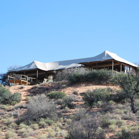 Ta Shebube Polentswa stands in Botswana's section of the Kgalagadi Transfrontier Park.