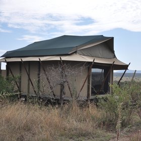 Basecamp Eagle View is set in the Maasai-owned Mara Naboisho Conservancy…