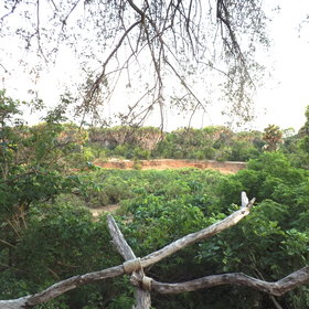 ...and enjoy the views across the Selous.