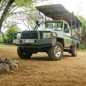 Activities at Lewa House focus on game drives in the lodge's Land Cruisers.