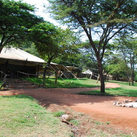 Cottars 1920s Camp is a luxury camp, set in its own conservancy.
