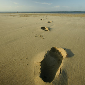 The Lamu archipelago has huge beaches to explore.