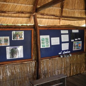 …and learn about a great nature and conservation project going on here.