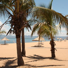 The beach here, with its palm trees and golden sand, is really inviting...