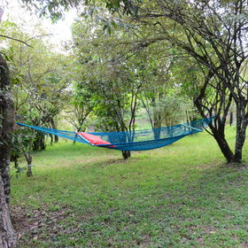...and hammock swinging from the trees in front.