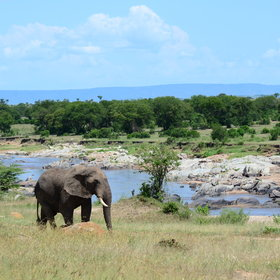 … and as these last two photos show, the game viewing and scenery is still spectacular.