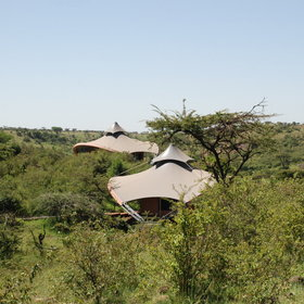 The tented suites are widely spread through the bush...