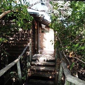 A raised, wooden walkway through the forest leads to the 16 rooms.