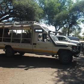 Activities at Elephant's Eye focus mainly on game drives although walking is also offered.