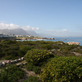 Ocean Eleven is a great base to explore Hermanus or wander along the cliff top path.