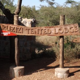 Welcome to Ruzizi Tented Lodge...
