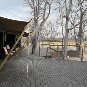 Camp Kuzuma is situated in the Kuzuma Forest Reserve...