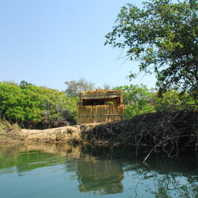 Kaingu also has a hide nearby, which is great for watching passing animals.