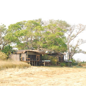 Shumba Camp is built on a tree island in the middle of the Busanga Plains.