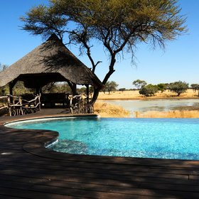 Okonjima Villa has a private pool and sala overlooking a waterhole where antelope drink.
