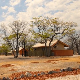 Halali Camp is a good central base from where to explore Etosha National Park.