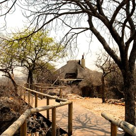 Little Ongava is the more luxurious sister property to Ongava Lodge...