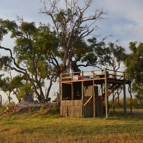 If you're feeling adventurous - Kanana's sleep out deck might appeal...
