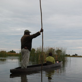 Mokoro trips offer a tranquil way to experience the lagoons and their wildlife.