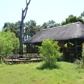 Chitabe Camp is situated in the southern part of the Okavango Delta.