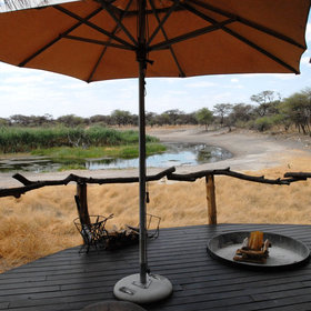 From all places at the camp you have a perfect view of the active waterhole.
