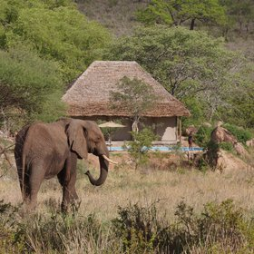 Nimali is a new camp on the edge of Tarangire National Park.