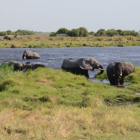 Activities focus on morning and evening game drives and this open environment is...