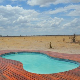 ... an inviting plunge pool from where you can watch the waterhole activity.