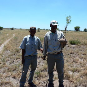 The activities include an informative nature walk with one of the Bushman trackers,…