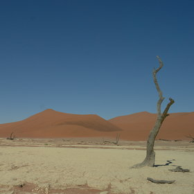 ...and Deadvlei.