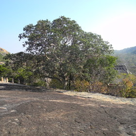 Located within Matobo Hills National Park, Big Cave Camp...