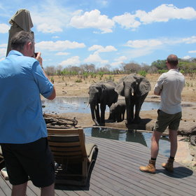 ...sun deck, water trough and waterhole...