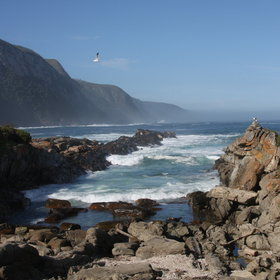 Storms River Restcamp is situated in Tsitsikama National Park on the Garden Route.
