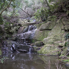 ...small tinkeling waterfalls...