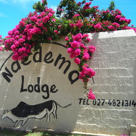 Ndema Lodge is a lovely little guest house situated in Namaqualand in South Africa.