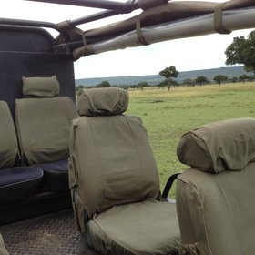 Activities mainly focus on game drives in the large and varied Mara North Conservancy...