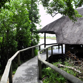 The camp's thatched chalets are large, cool and raised up on stilts